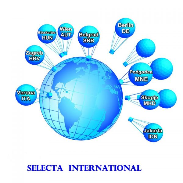 Selecta-International-Grafik1
